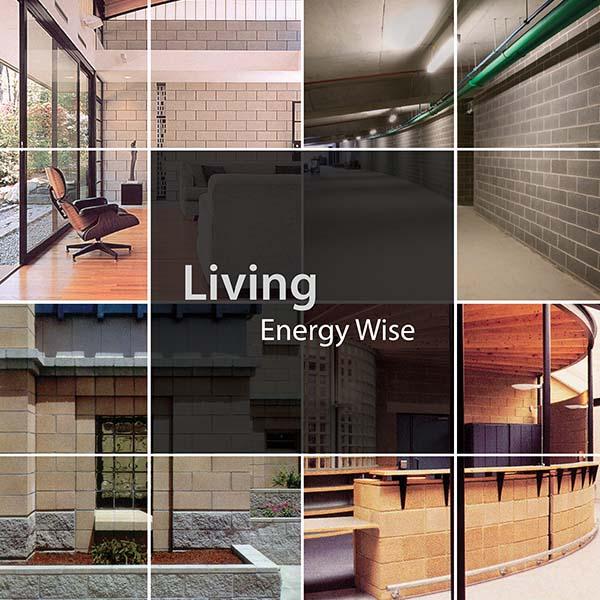 Living energy wise